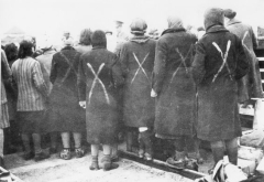 Female prisoners during selection at Ravensbruck.  Image licensed under public domain via Wikimedia